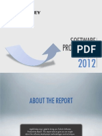 Software Productivity Report