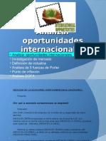 4. analizar oportunidades internacionales[1]