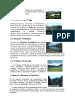 EcologiaT1