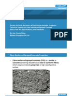 Technical Seminar on Fibre Reinforced Sprayed Concrete for SRMEG