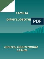 FAMILIA DIPHYLLOBOTHRIIDAE