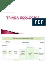 TEMA 14:Triada ecologica