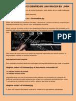 Ocultar Archivos Dentro de Una Imagen en Linux