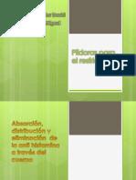 Modelado de antihistamina