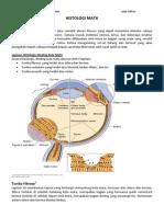 LTM Histologi Mata JF