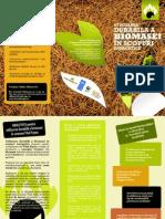 Utilizarea Durabila a Biomasei in Scopuri Energetice