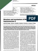 topoisomerasa2