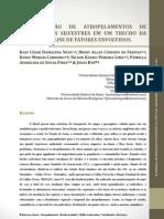 Quantificação de atropelamentos de vertebrados silvestres em um trecho da GO 213 e análise de fatores envolvidos