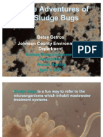 Adventures of Sludge Bugs