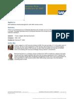 SAP IDM Business Role Concept