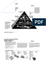 Mod11.Food Pyramid1.06.04