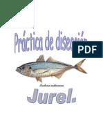 Diseccion Jurel