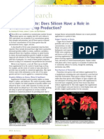 Does Silicon Have a Role in Or No Mental Crop Production