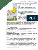 Descriere Arcanele Minore Monede (3)