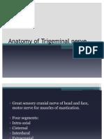 Anatomy of Trigeminal Nerve