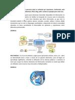 2 En base a un análisis personal Qué se entiende por repositorio, multimedia, web 2.0 correo electrónico, slideshare, flickr, blog, wiki señale un ejemplo para cada caso