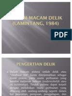 MACAM-MACAM_DELIK