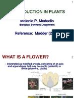 Plant Reproductive Structures