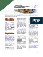 Bulletin Vol1 Num3