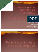 Culture & Subculture