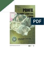 Profil Penduduk Lanjut Usia 2009