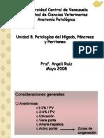 Patologias Hepaticas III