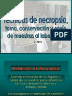 Tecnicas de Necropsia 2010 I Hora