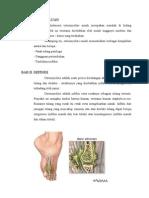 Copy of Osteomielitis2003