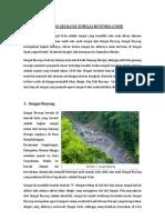 Kondisi Geologi Sungai Boyong