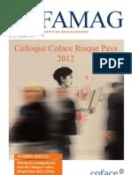 COFAMAG_ColloqueRisquePays2012