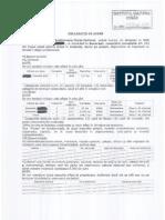 Catrinel Plesu - Declaratie de Avere - ICR