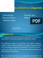 Les Infections Urinaires Et Diagnostic