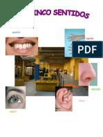 Cuaderno Actividades Los Cinco Sentidos