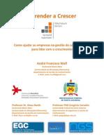 Como ajudar as empresas na gestão do conhecimento para lidar com o crescimento. André Francisco Wolf.