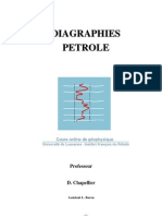 Diagraphies Petrol