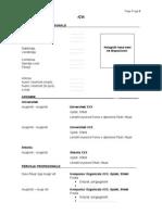 CV Standard Template-Shqip (1)