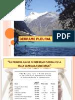 derramepleural-100331195802-phpapp02