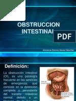 01 Obstruccion Intestinal
