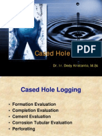 Cased Hole Logging
