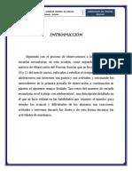 3hisfrancisco_Pérez_ensayo