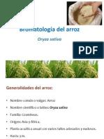 Bromatología del arroz