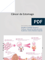 Câncer Gástrico