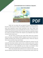 Bagaimana Proses Fotosintesis Pada Tumbuhan Terjadi