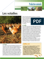 Volailles