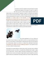 Animales equinos
