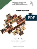 Relatorio de Atividades 2011