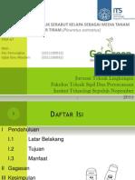 PKTI Presentasi