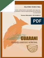 relatorio final abril 2010-1 Segurança alimentar e Nutricional guarani sao paulo