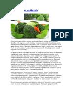 Dieta vegana optimala