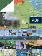 Cowichan Green Map- FULL